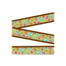 "Carson-Dellosa Colorful Bulletin Board Border - Owl - 3"" Width x 36"" Length - Assorted - 12 / Pack"