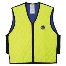 Ergodyne 12536 Chill-Its 6665 Evaporative Cooling Vest 2Xl Lime (1 EA)