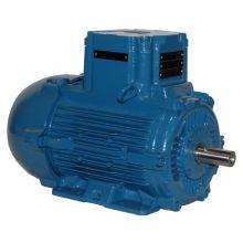 WEG E31518XP3YAX355MLF3W 430HP,1500//1800RPM,355M/L Frame,ATEX-FOOTMOUNT (1 EA)
