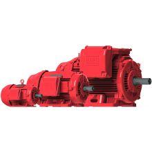 WEG 25030EP3OFP449TS-W22 250HP,3000RPM,447/9TS Frame,FIREPUMP-TEFC-IE2 (1 EA)
