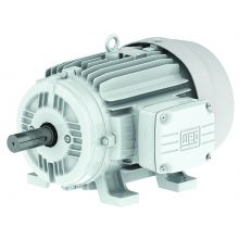 WEG 01512ES3EOW284T-W22 15HP,1200RPM,284/6T Frame,OIL-WELL-TEFC (1 EA)