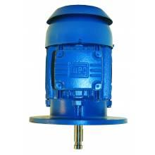 WEG 15036ET3G445HP-W22 150HP,3600RPM,444/5HP Frame,TEFC-P-BASE (1 EA)