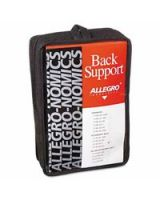 Allegro 037-7176-03 Large Economy Back Support Belt (1 EA)