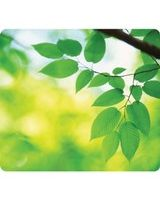 "Fellowes Recycled Mouse Pad - Leaves - 0.1"" x 9"" x 8"" Dimension - Multicolor - Rubber Base - Scratch Resistant - TAA Compliant"