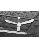 Tpi Corp. IHR-56R Industrial Reversableceiling Fan